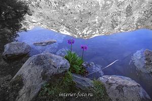 Пейзаж фото Очарование Мультинского озера