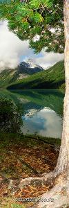 Вертикальное фото Утро на Кучерлинском озере Алтай