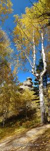 Скала Церковка. Окрестности Белокурихи. Алтай (7035)