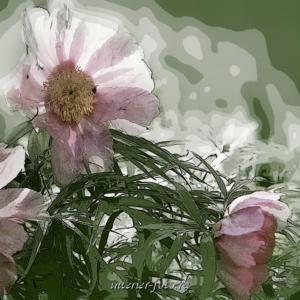 Фотографии на стену Цветы для триптиха