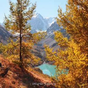 Пейзажи Алтая Шавлинское озеро сверху