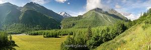 Поляна Куркуре в предгорьях Белухи. Алтай (6358)
