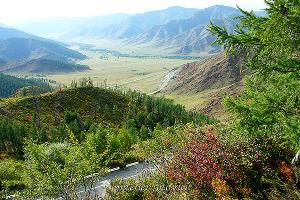 На перевале Чике-Таман, Алтай