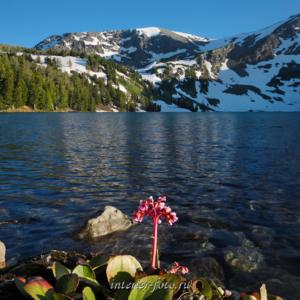 Квадратные фотографии Озеро у подножия горы Красной (4270)