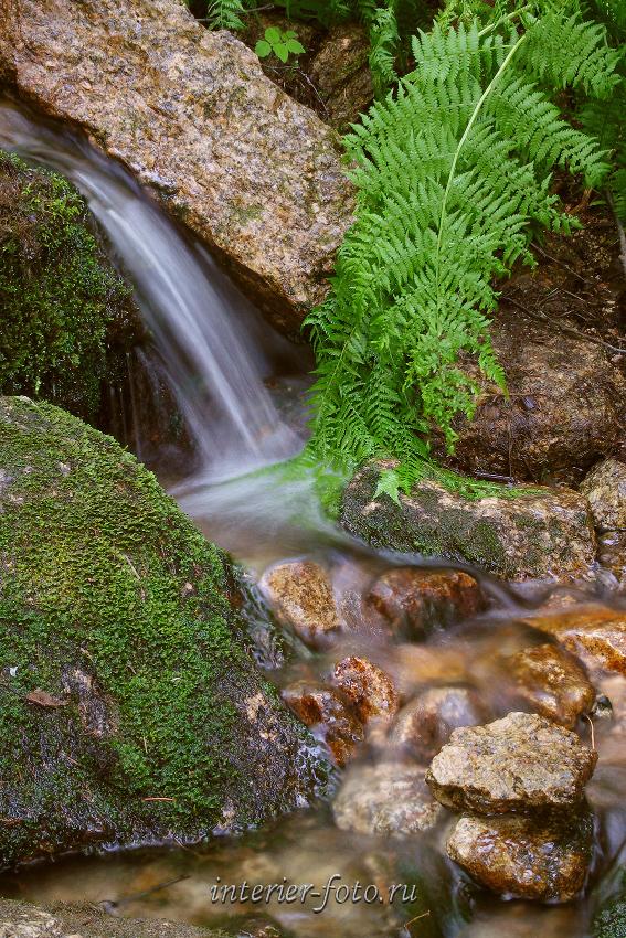 Ручей на склонах горы Синюхи - Горная Колывань