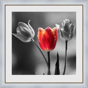 interier-foto-1256128