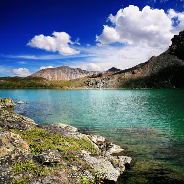 Озеро на Курайском хребте