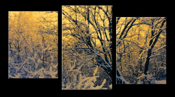 Модульное фото - зима