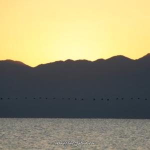 Озеро Хар-Ус-Нуур в Монголии