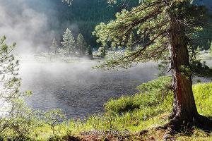 Река Мульта - Мультинские озера