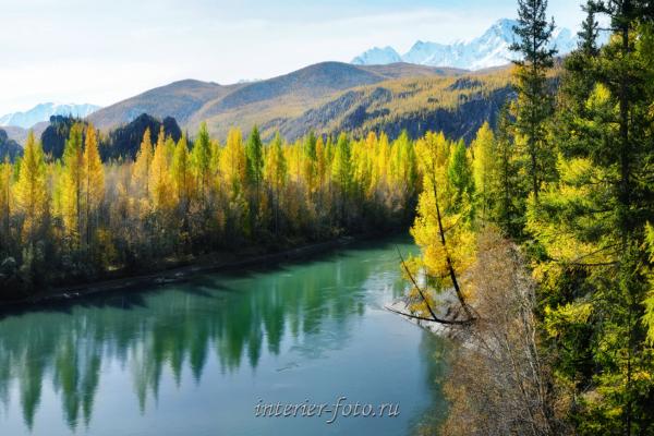 Осенняя Чуя - Алтай