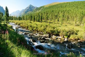 Долина реки Куйгук - Катунский хребет