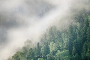 Туманные склоны - Телецкое озеро