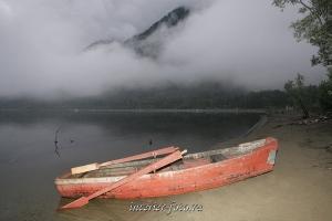 художественное фото Телецкое озеро