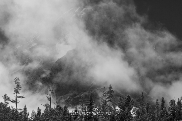 Туманное утро в долине Кучерлы