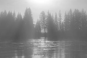 чб фото Туман на Иркуте в Тункинской долине