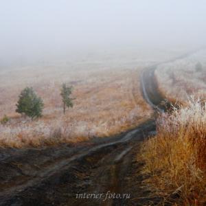 Авторское художественное фото Тема дороги