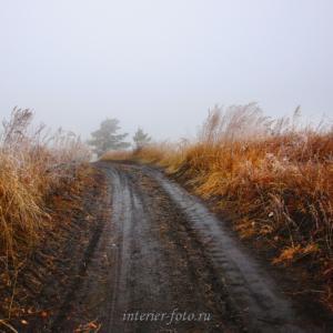 художественное фото Тема дороги