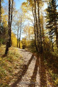Осень в Белокурихе