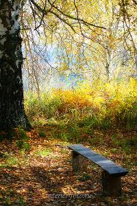 Осенний день в Белокурихе