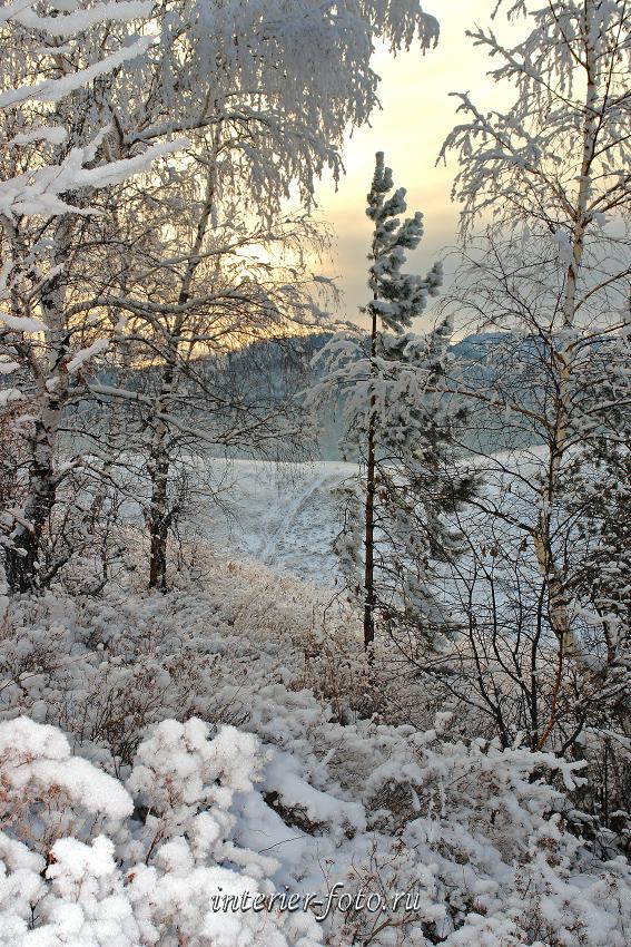 Зима пришла в Белокуриху