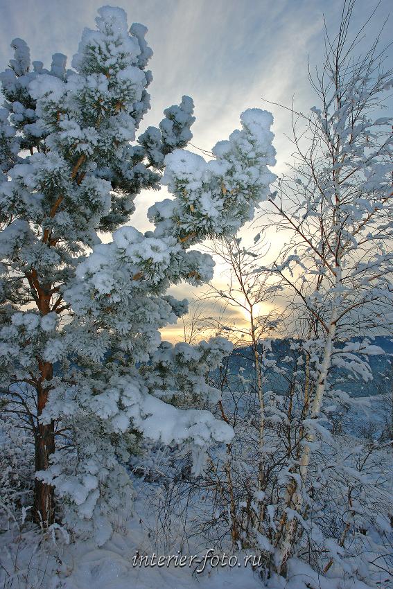 Зимний вечер в Белокурихе