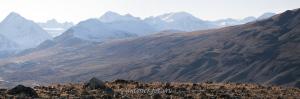Таван-Богд-Уул с вершиной Найрамдал - высшей точкой Монголии