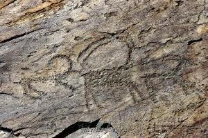Наскальные рисунки Бикикту-Бом - Каракольская долина