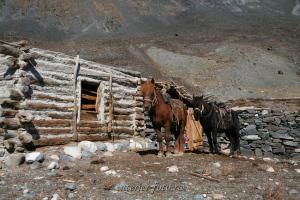 В долине Цаган-Гола - Монгольский Алтай