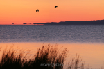 Рассвет на озере Хар-Ус-Нуур