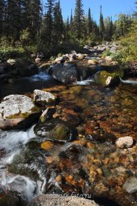 Один из многочисленных ручьев Кузнецкого Алатау