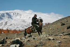 Монгольский пастух