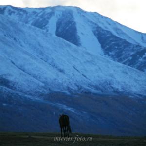 Вечереет - Монголия