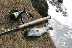 Рыбалка на Ховде в Монголии