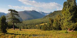 В долине Алтыгы-Айры - Алтай