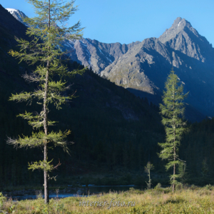 Вершины Катунского хребта - Кулагаш