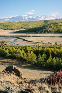 Монгун-Тайга над долиной каргы в Западной Туве