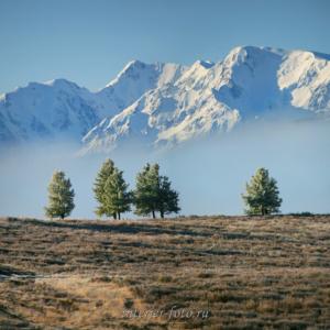 Вершины Северо-Чуйского хребта