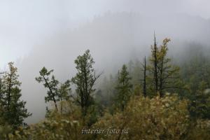 В долине реки Улуг-Хондергей - Тува