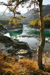 купить красивые фото Осенняя Катунь в Чемале