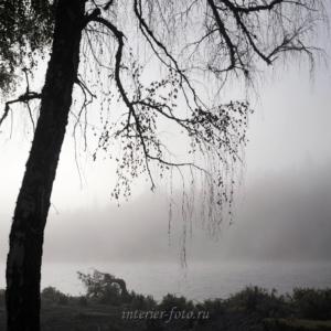 Черно-белая фотография Туманное утро на Катуни