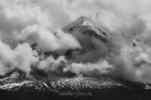 Чуйские белки в облаках - Курай