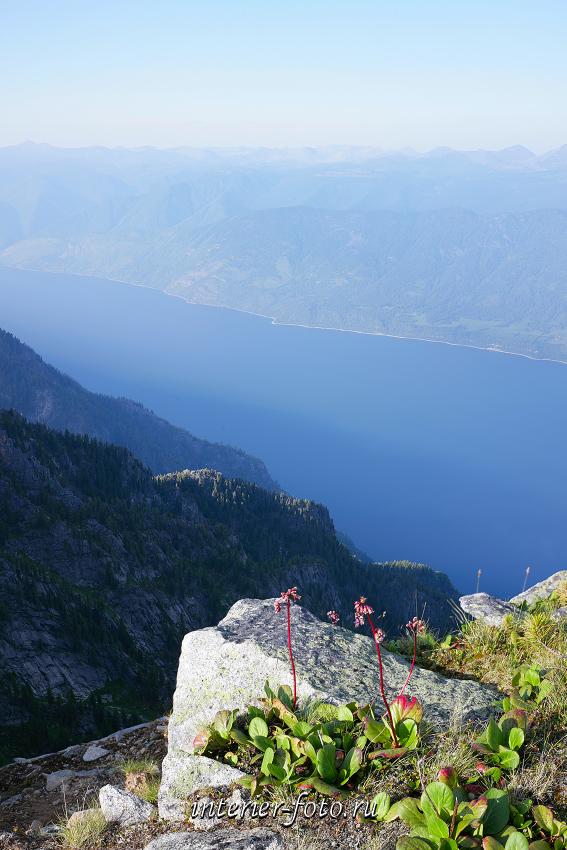 Телецкое озеро с горы Алтын-Туу