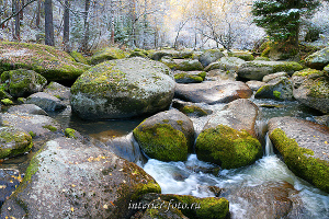 Река Белокуриха Алтай