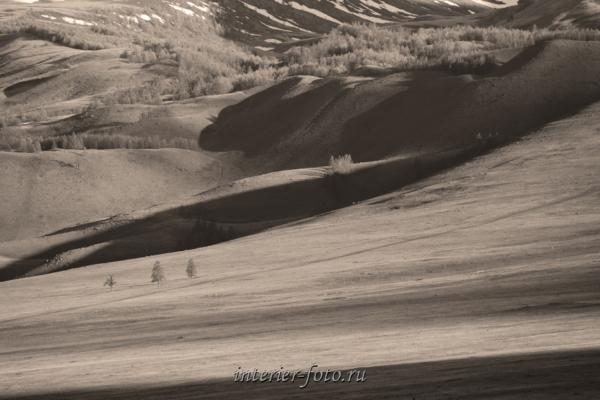 Склоны Курайского хребта - сепия