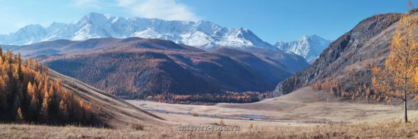 Северо-Чуйский хребет осенью
