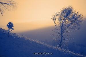 Зимний туман на Алтае