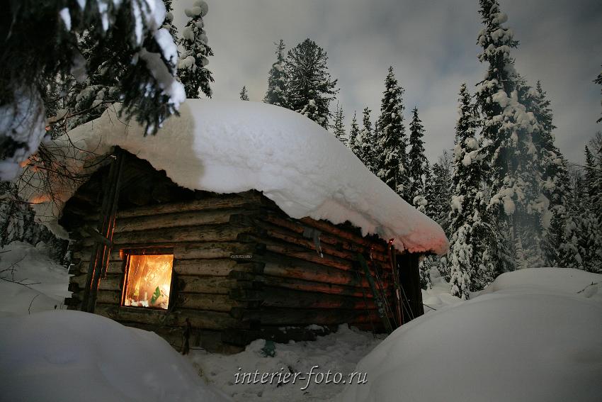 естественного освещения зимовье в тайге фото портрет