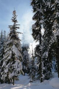 zima-sibir-9