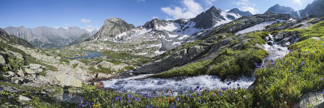 Лето в горах Алтая